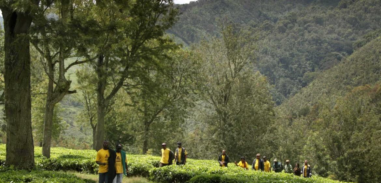 Le personnel visite le parc lodge co co for Parc a visiter